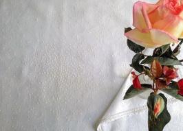 Lino crudo con hilo beige
